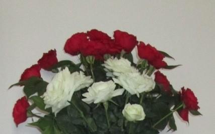 Blida des roses qui ne fânent pas | Blida suivie sur Mondoblog