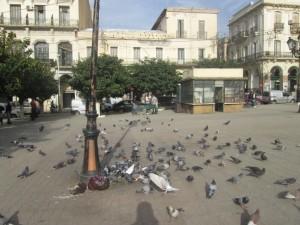 Place du centre de la ville de Blida