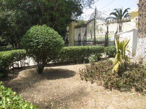 Joli détail à l'intérieur du jardin Lumumba